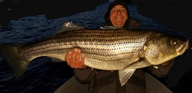Click image for larger version.  Name:2019 bass 2.jpg Views:73 Size:29.1 KB ID:432683