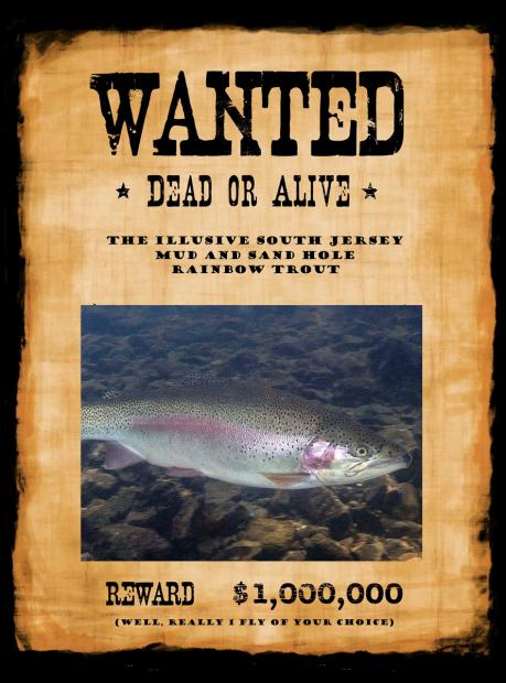 Click image for larger version.  Name:trout-wanted.jpg Views:291 Size:49.8 KB ID:376370